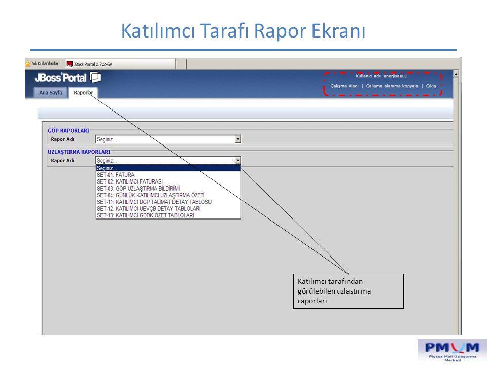 Katılımcı Tarafı Rapor Ekranı Katılımcı tarafından görülebilen uzlaştırma raporları