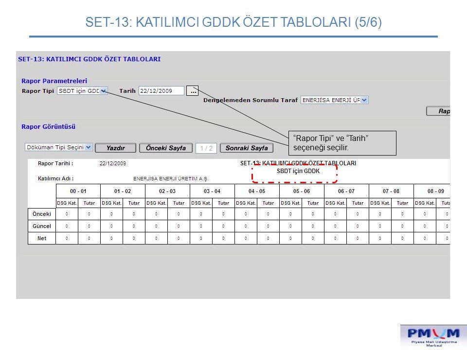 """SET-13: KATILIMCI GDDK ÖZET TABLOLARI (5/6) """"Rapor Tipi"""" ve """"Tarih"""" seçeneği seçilir."""