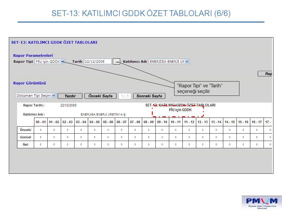 """SET-13: KATILIMCI GDDK ÖZET TABLOLARI (6/6) """"Rapor Tipi"""" ve """"Tarih"""" seçeneği seçilir."""