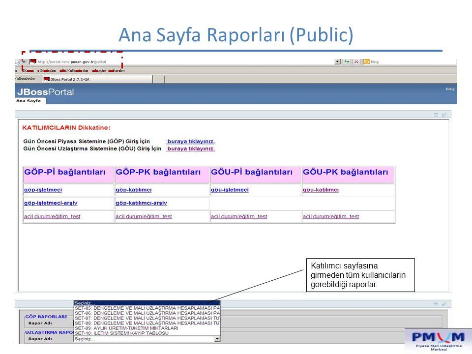 Ana Sayfa Raporları (Public) Katılımcı sayfasına girmeden tüm kullanıcıların görebildiği raporlar.
