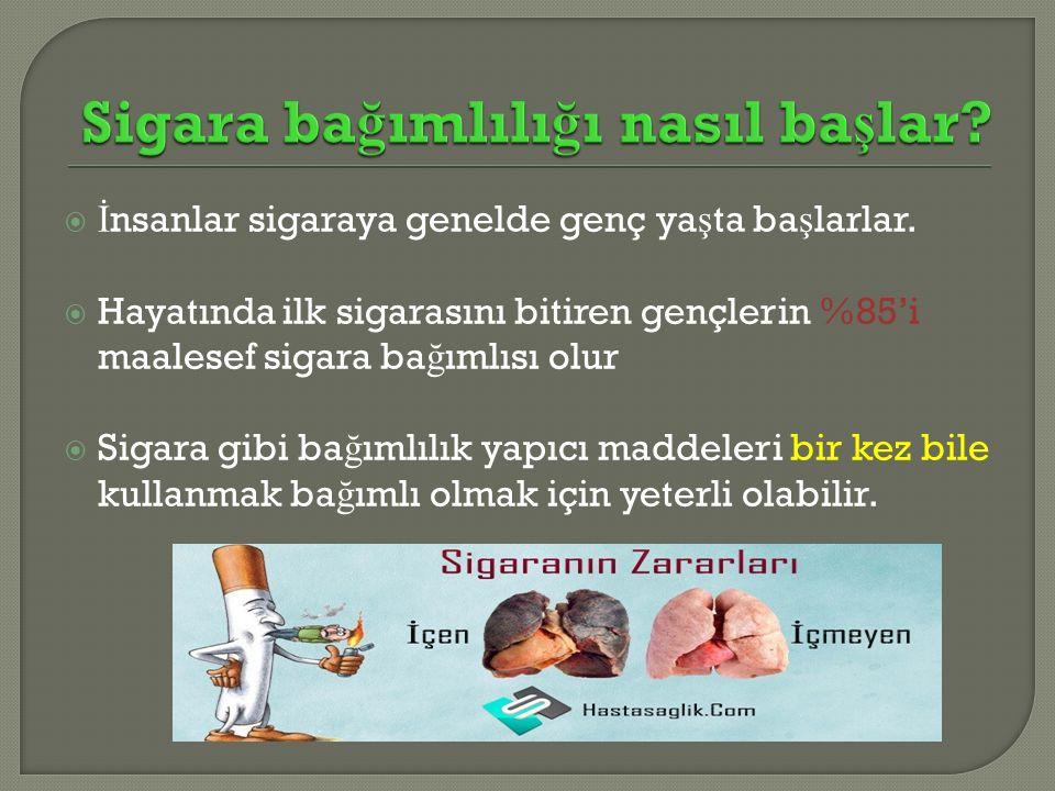  İ nsanlar sigaraya genelde genç ya ş ta ba ş larlar.  Hayatında ilk sigarasını bitiren gençlerin %85'i maalesef sigara ba ğ ımlısı olur  Sigara gi