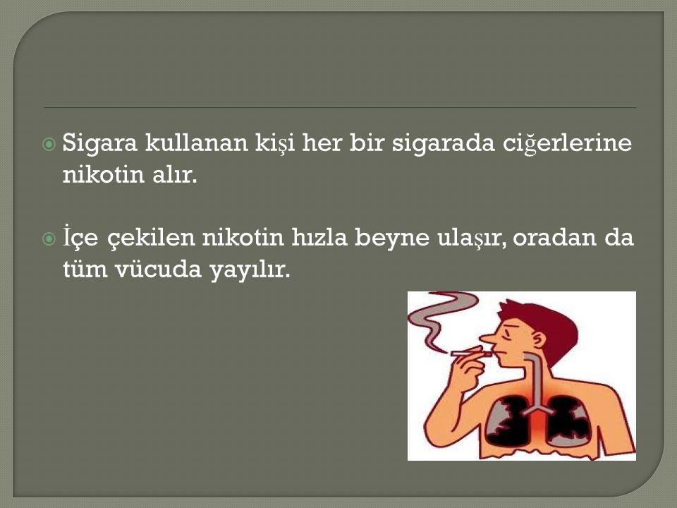  Sigara kullanan ki ş i her bir sigarada ci ğ erlerine nikotin alır.  İ çe çekilen nikotin hızla beyne ula ş ır, oradan da tüm vücuda yayılır.