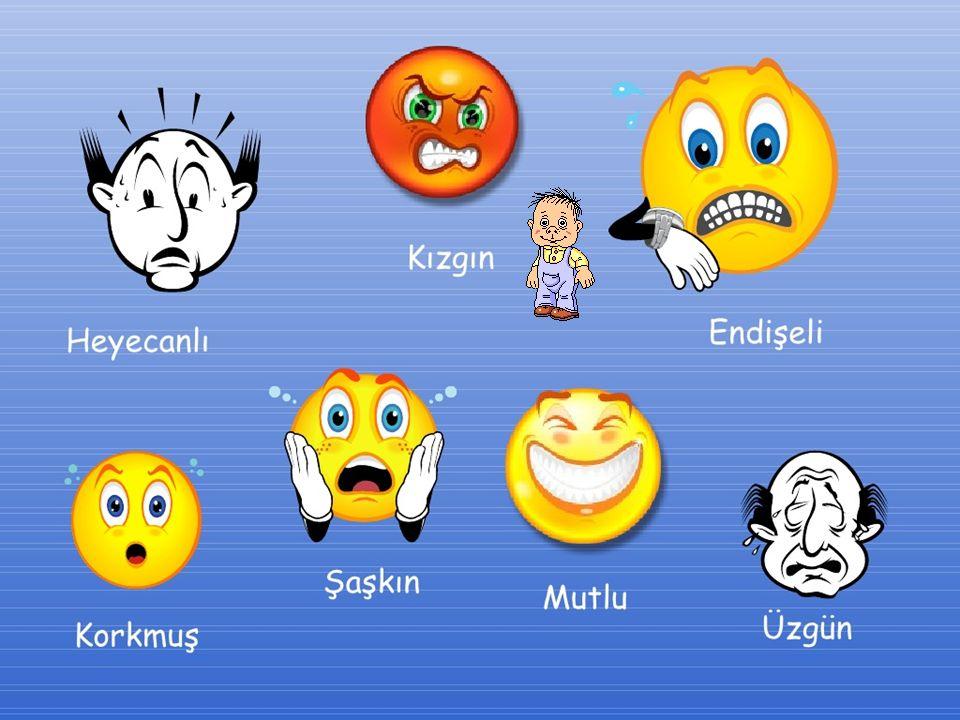 İnsanlar değişik durumlarda sevinç, üzüntü, kızgınlık, korku gibi duyguları gösterebilirler.