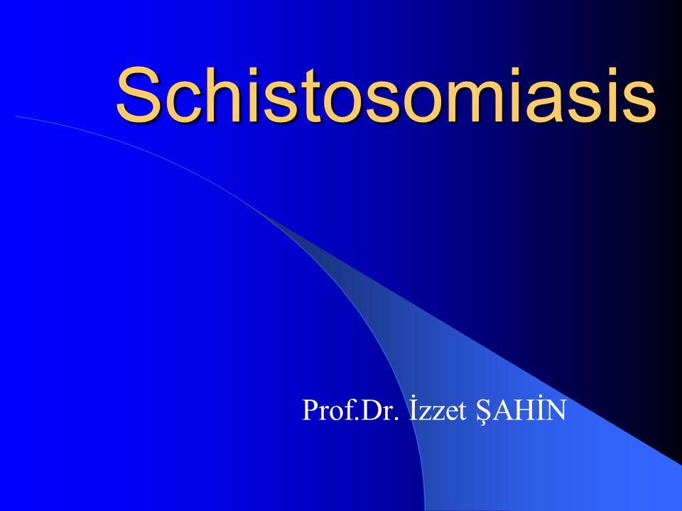 Schistosomiasis Prof.Dr. İzzet ŞAHİN