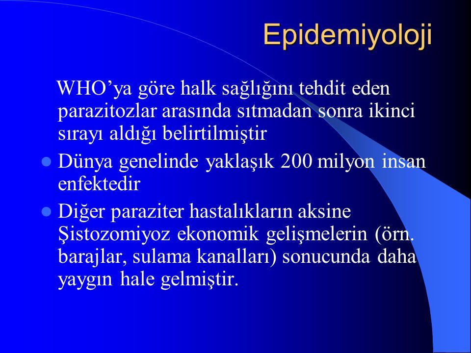Epidemiyoloji Epidemiyoloji WHO'ya göre halk sağlığını tehdit eden parazitozlar arasında sıtmadan sonra ikinci sırayı aldığı belirtilmiştir Dünya gene
