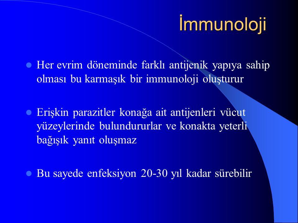 İmmunoloji İmmunoloji Her evrim döneminde farklı antijenik yapıya sahip olması bu karmaşık bir immunoloji oluşturur Erişkin parazitler konağa ait antijenleri vücut yüzeylerinde bulundururlar ve konakta yeterli bağışık yanıt oluşmaz Bu sayede enfeksiyon 20-30 yıl kadar sürebilir