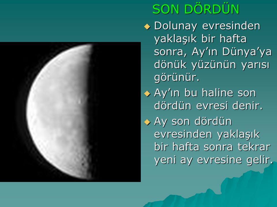 SON DÖRDÜN SON DÖRDÜN  Dolunay evresinden yaklaşık bir hafta sonra, Ay'ın Dünya'ya dönük yüzünün yarısı görünür.  Ay'ın bu haline son dördün evresi