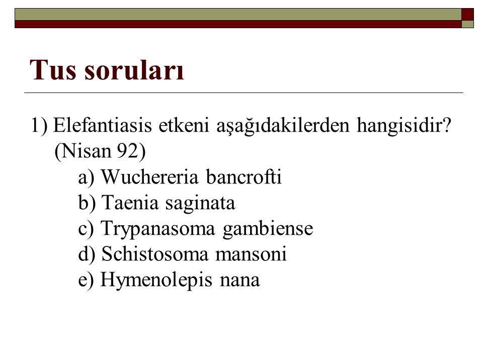 Tus soruları 1) Elefantiasis etkeni aşağıdakilerden hangisidir.