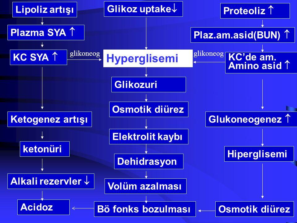 6 İnsülin eksikliği Lipoliz aktivasyonu Plazma SYA'i artışı KC yağ asitleri artışı Ketogenezin hızlanması Karnitin acetyl transferase aktivasyonu KC k