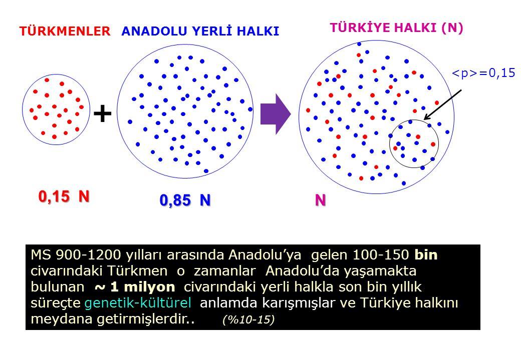 + 0,15 N 0,85 N N MS 900-1200 yılları arasında Anadolu'ya gelen 100-150 bin civarındaki Türkmen o zamanlar Anadolu'da yaşamakta bulunan ~ 1 milyon civarındaki yerli halkla son bin yıllık süreçte genetik-kültürel anlamda karışmışlar ve Türkiye halkını meydana getirmişlerdir..
