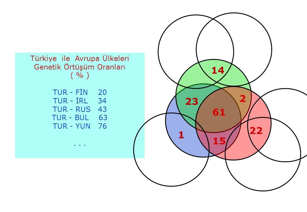 31.05.201636 Türkiye ile Avrupa Ülkeleri Genetik Örtüşüm Oranları ( % ) TUR - FİN 20 TUR - İRL 34 TUR - RUS 43 TUR - BUL 63 TUR - YUN 76...