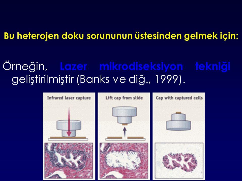 Bu heterojen doku sorununun üstesinden gelmek için: Örneğin, Lazer mikrodiseksiyon tekniği geliştirilmiştir (Banks ve diğ., 1999).