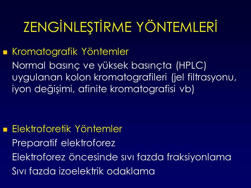 ZENGİNLEŞTİRME YÖNTEMLERİ Kromatografik Yöntemler Normal basınç ve yüksek basınçta (HPLC) uygulanan kolon kromatografileri (jel filtrasyonu, iyon değişimi, afinite kromatografisi vb) Elektroforetik Yöntemler Preparatif elektroforez Elektroforez öncesinde sıvı fazda fraksiyonlama Sıvı fazda izoelektrik odaklama
