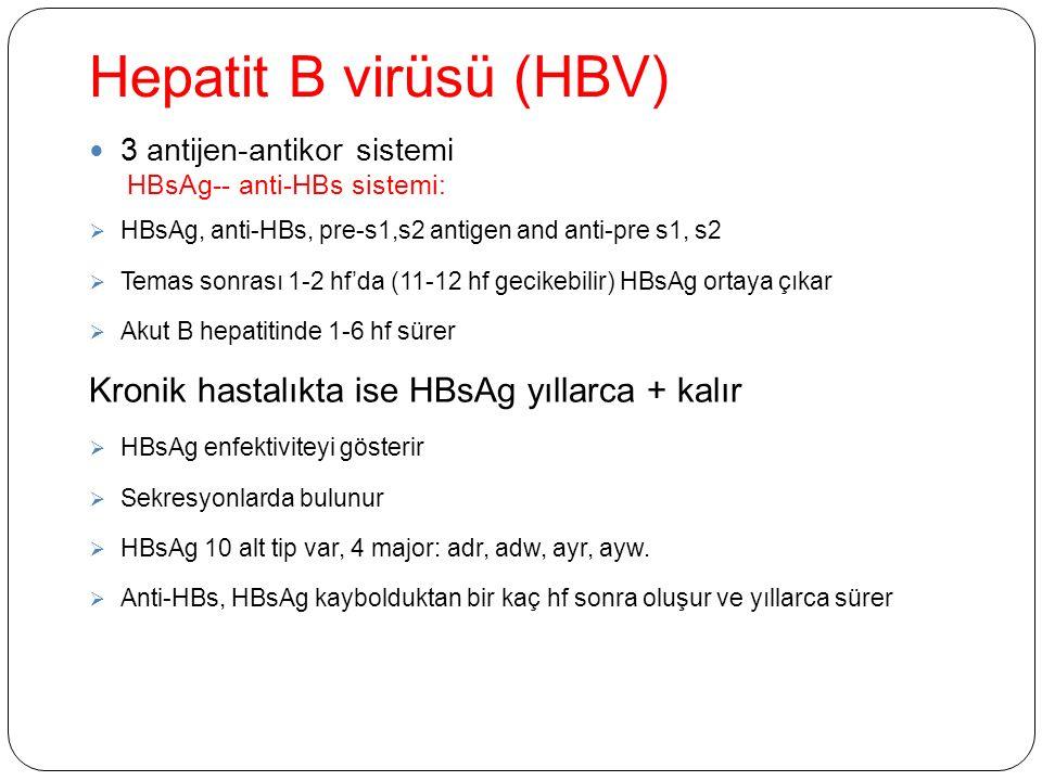 Hepatit B virüsü (HBV) 3 antijen-antikor sistemi HBsAg-- anti-HBs sistemi:  HBsAg, anti-HBs, pre-s1,s2 antigen and anti-pre s1, s2  Temas sonrası 1-2 hf'da (11-12 hf gecikebilir) HBsAg ortaya çıkar  Akut B hepatitinde 1-6 hf sürer Kronik hastalıkta ise HBsAg yıllarca + kalır  HBsAg enfektiviteyi gösterir  Sekresyonlarda bulunur  HBsAg 10 alt tip var, 4 major: adr, adw, ayr, ayw.