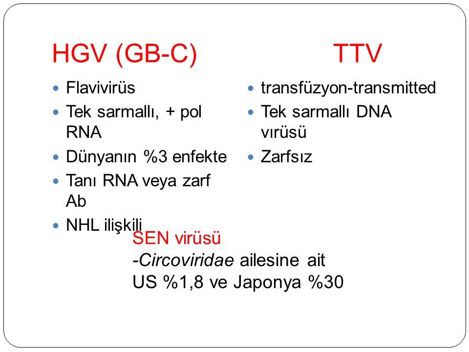 HGV (GB-C)TTV Flavivirüs Tek sarmallı, + pol RNA Dünyanın %3 enfekte Tanı RNA veya zarf Ab NHL ilişkili transfüzyon-transmitted Tek sarmallı DNA vırüsü Zarfsız SEN virüsü -Circoviridae ailesine ait US %1,8 ve Japonya %30
