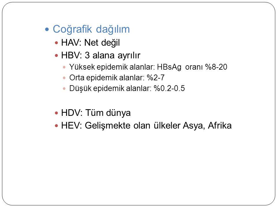 Coğrafik dağılım HAV: Net değil HBV: 3 alana ayrılır Yüksek epidemik alanlar: HBsAg oranı %8-20 Orta epidemik alanlar: %2-7 Düşük epidemik alanlar: %0.2-0.5 HDV: Tüm dünya HEV: Gelişmekte olan ülkeler Asya, Afrika
