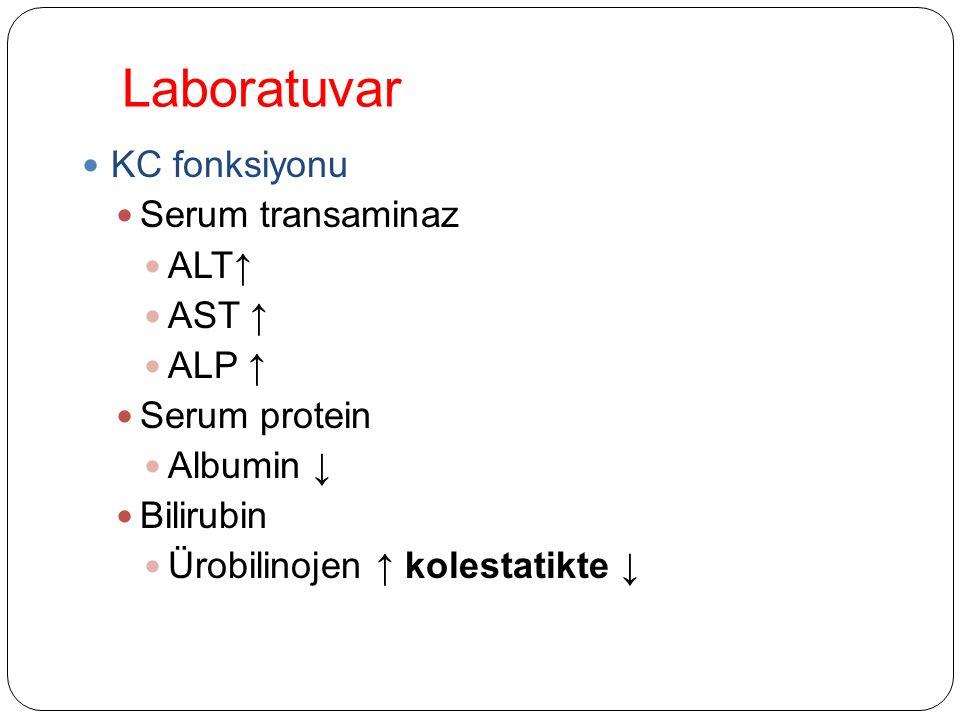 Laboratuvar KC fonksiyonu Serum transaminaz ALT↑ AST ↑ ALP ↑ Serum protein Albumin ↓ Bilirubin Ürobilinojen ↑ kolestatikte ↓