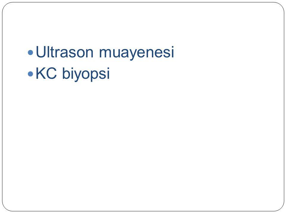 Ultrason muayenesi KC biyopsi