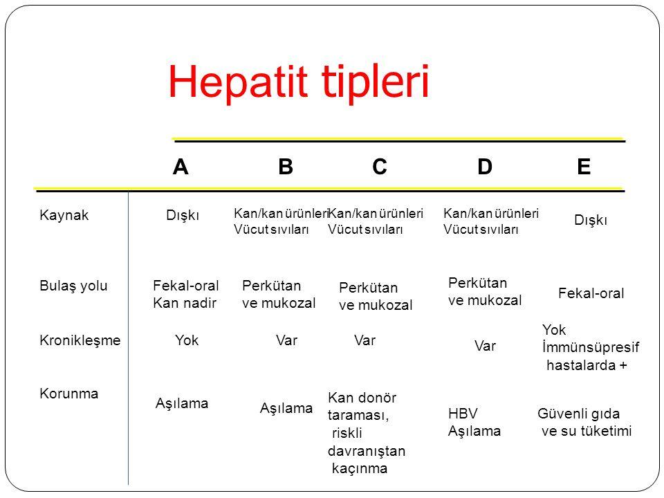 Hepatit tipleri KaynakDışkı Kan/kan ürünleri Vücut sıvıları Bulaş yoluFekal-oral Kan nadir Perkütan ve mukozal KronikleşmeYokVar Yok İmmünsüpresif hastalarda + Korunma Aşılama Kan donör taraması, riskli davranıştan kaçınma Güvenli gıda ve su tüketimi ABCDE Kan/kan ürünleri Vücut sıvıları Kan/kan ürünleri Vücut sıvıları Dışkı Fekal-oral Perkütan ve mukozal Perkütan ve mukozal Var HBV Aşılama