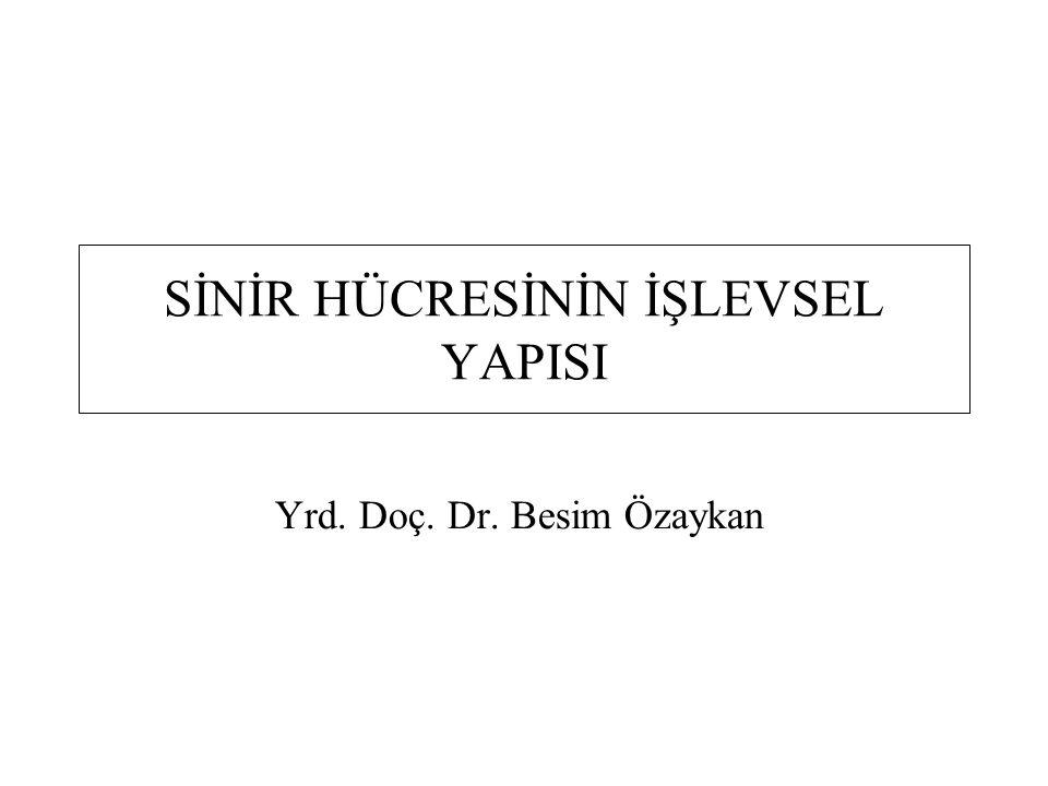 SİNİR HÜCRESİNİN İŞLEVSEL YAPISI Yrd. Doç. Dr. Besim Özaykan