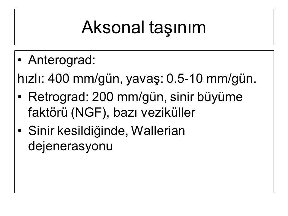 Aksonal taşınım Anterograd: hızlı: 400 mm/gün, yavaş: 0.5-10 mm/gün.