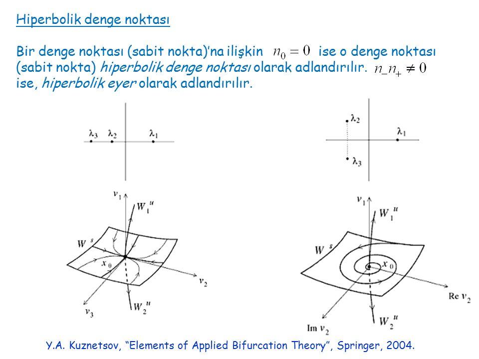 Hiperbolik denge noktası Bir denge noktası (sabit nokta)'na ilişkin ise o denge noktası (sabit nokta) hiperbolik denge noktası olarak adlandırılır.