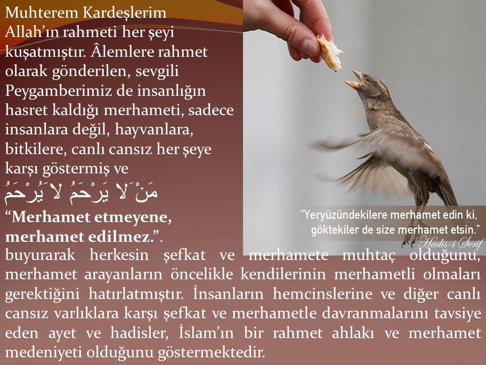 Muhterem Kardeşlerim Allah'ın rahmeti her şeyi kuşatmıştır. Âlemlere rahmet olarak gönderilen, sevgili Peygamberimiz de insanlığın hasret kaldığı merh