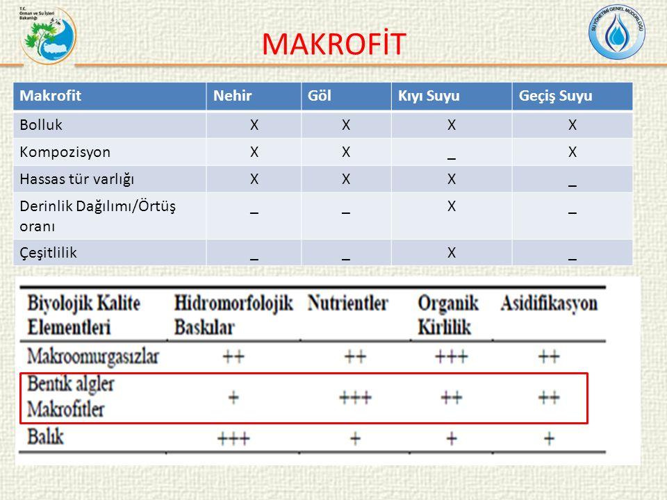 MAKROFİT Makrofit NehirGölKıyı SuyuGeçiş Suyu BollukXXXX KompozisyonXX_X Hassas tür varlığıXXX_ Derinlik Dağılımı/Örtüş oranı __X_ Çeşitlilik__X_
