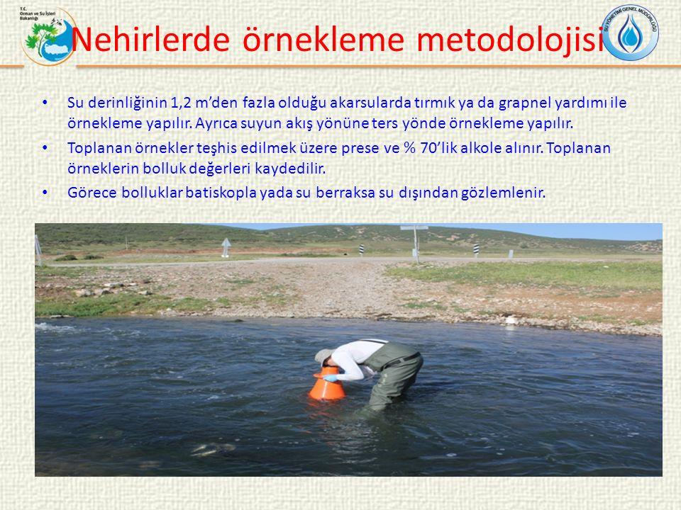 Nehirlerde örnekleme metodolojisi Su derinliğinin 1,2 m'den fazla olduğu akarsularda tırmık ya da grapnel yardımı ile örnekleme yapılır.