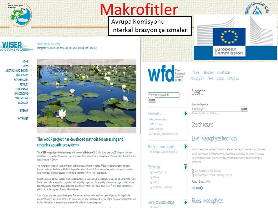 Avrupa Komisyonu İnterkalibrasyon çalışmaları