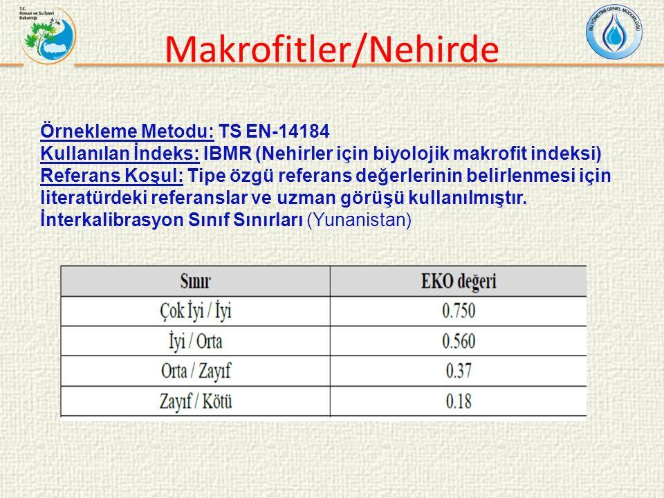 Makrofitler/Nehirde Örnekleme Metodu: TS EN-14184 Kullanılan İndeks: IBMR (Nehirler için biyolojik makrofit indeksi) Referans Koşul: Tipe özgü referans değerlerinin belirlenmesi için literatürdeki referanslar ve uzman görüşü kullanılmıştır.