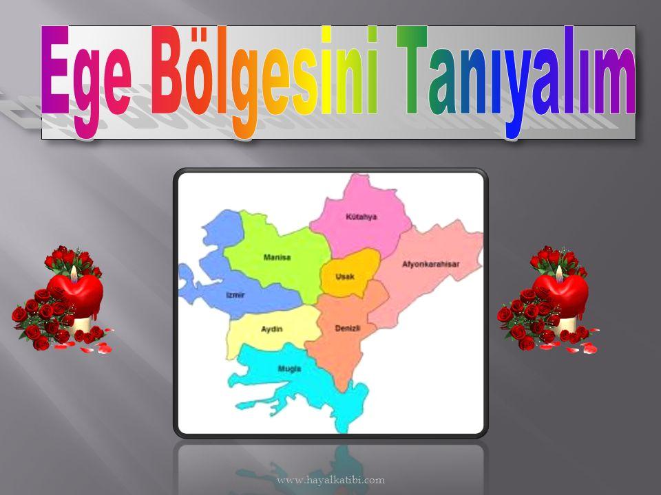 www.hayalkatibi.com