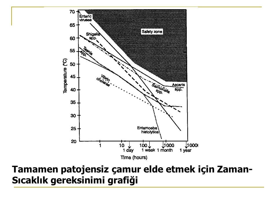 Tamamen patojensiz çamur elde etmek için Zaman- Sıcaklık gereksinimi grafiği