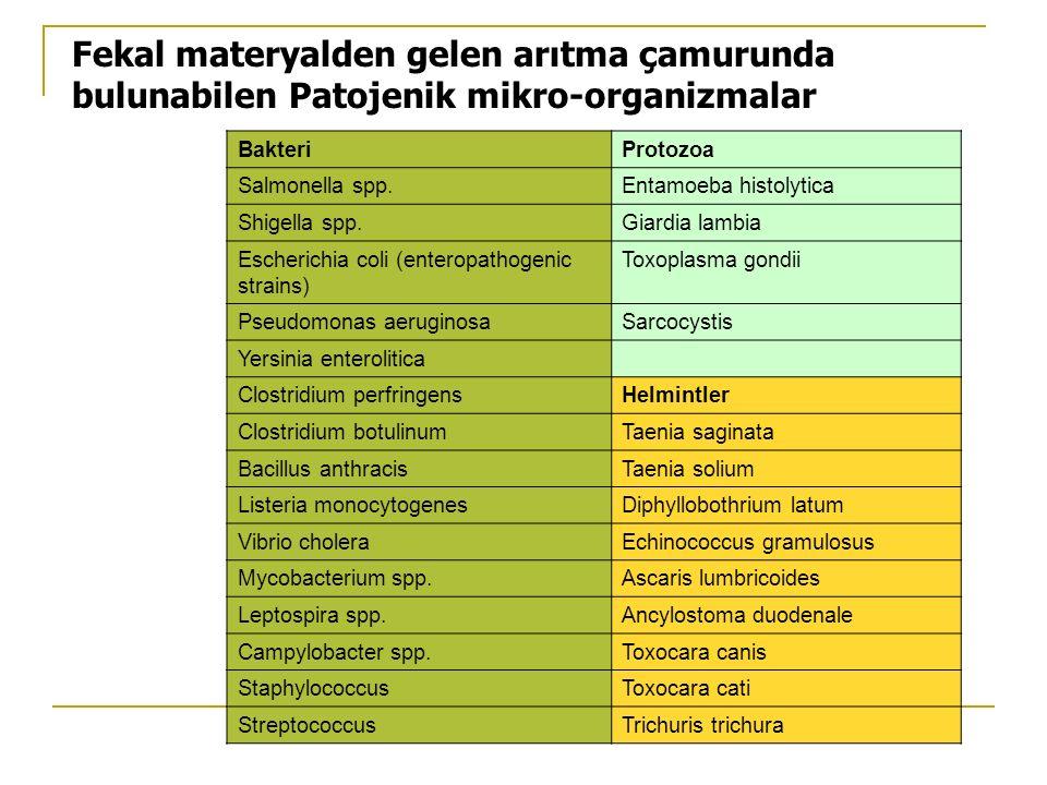 Fekal materyalden gelen arıtma çamurunda bulunabilen Patojenik mikro-organizmalar BakteriProtozoa Salmonella spp.Entamoeba histolytica Shigella spp.Gi