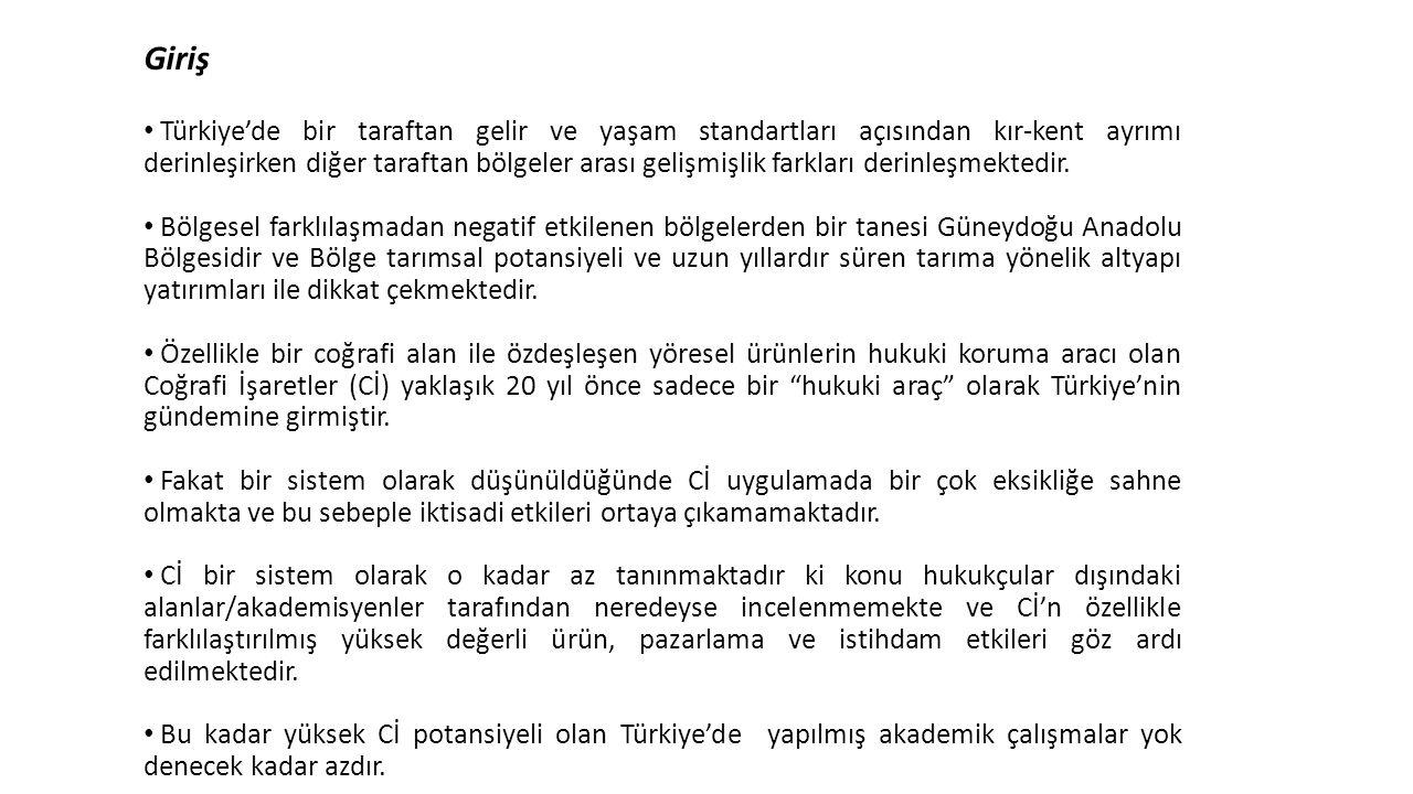 Giriş Türkiye'de bir taraftan gelir ve yaşam standartları açısından kır-kent ayrımı derinleşirken diğer taraftan bölgeler arası gelişmişlik farkları d