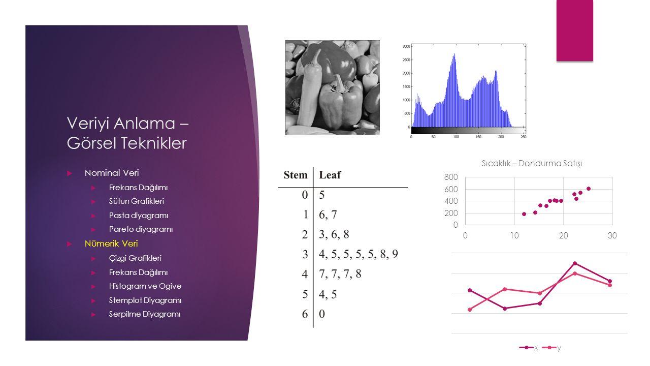 Veriyi Anlama – Görsel Teknikler  Nominal Veri  Frekans Dağılımı  Sütun Grafikleri  Pasta diyagramı  Pareto diyagramı  Nümerik Veri  Çizgi Grafikleri  Frekans Dağılımı  Histogram ve Ogive  Stemplot Diyagramı  Serpilme Diyagramı