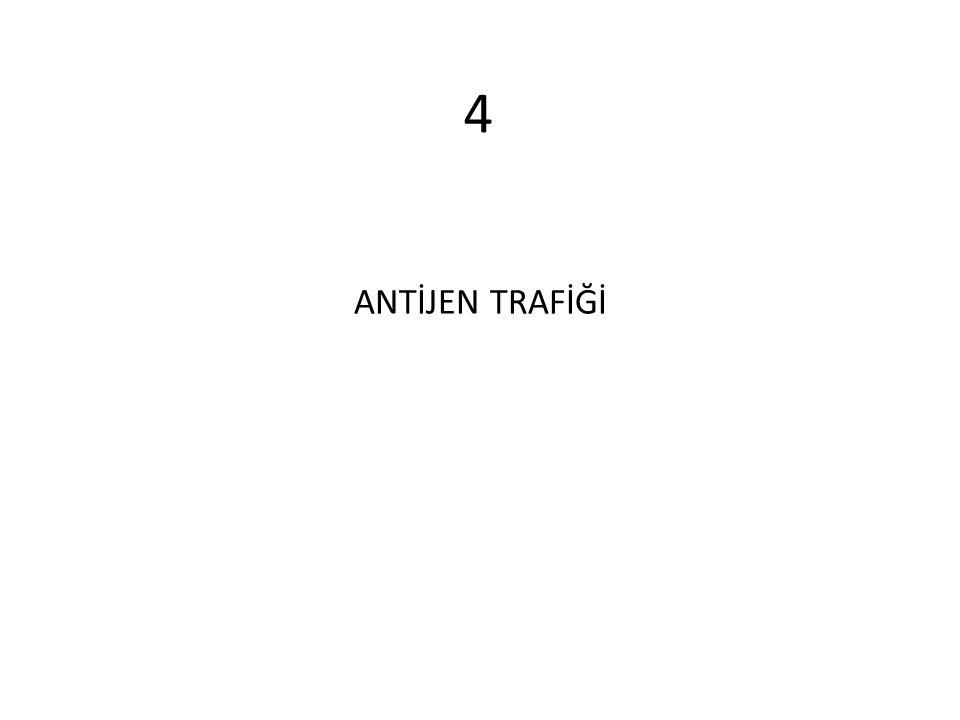 ANTİJEN TRAFİĞİ 4