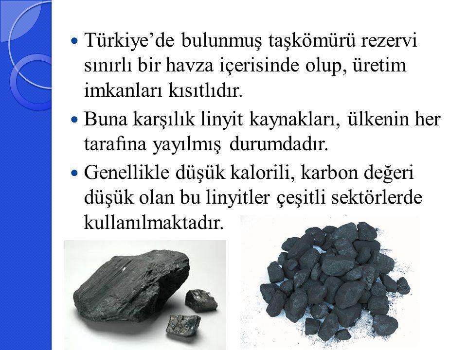 Türkiye'de bulunmuş taşkömürü rezervi sınırlı bir havza içerisinde olup, üretim imkanları kısıtlıdır. Buna karşılık linyit kaynakları, ülkenin her tar