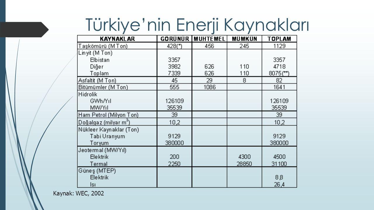 Türkiye'nin Enerji Kaynakları Kaynak: WEC, 2002