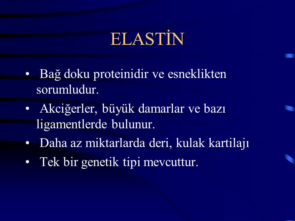 ELASTİN Bağ doku proteinidir ve esneklikten sorumludur. Akciğerler, büyük damarlar ve bazı ligamentlerde bulunur. Daha az miktarlarda deri, kulak kart