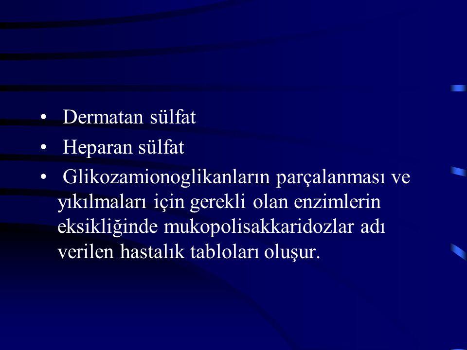 Dermatan sülfat Heparan sülfat Glikozamionoglikanların parçalanması ve yıkılmaları için gerekli olan enzimlerin eksikliğinde mukopolisakkaridozlar adı