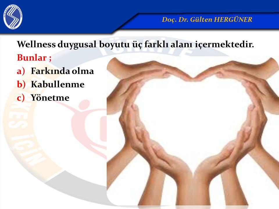 Wellness duygusal boyutu üç farklı alanı içermektedir. Bunlar ; a)Farkında olma b)Kabullenme c)Yönetme Doç. Dr. Gülten HERGÜNER