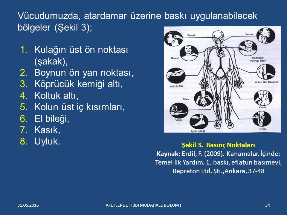 31.05.2016AFETLERDE TIBBİ MÜDAHALE BÖLÜM I34 Vücudumuzda, atardamar üzerine baskı uygulanabilecek bölgeler (Şekil 3); Şekil 3.