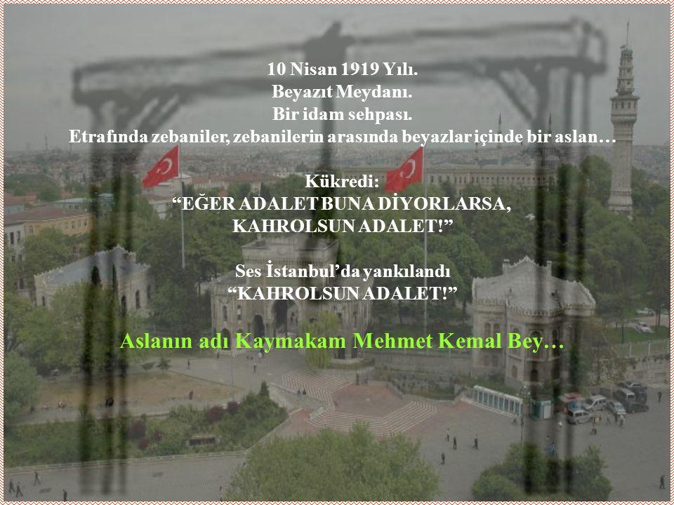Yazdığı vasiyetinde ailesini Türk Milletine emanet eden Kemal Bey, vasiyetini şu sözlerle bitirir.