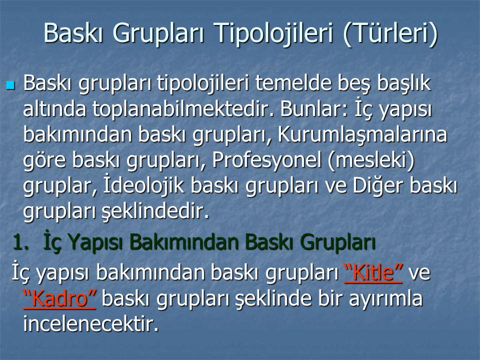 Baskı Grupları Tipolojileri (Türleri) Baskı grupları tipolojileri temelde beş başlık altında toplanabilmektedir.
