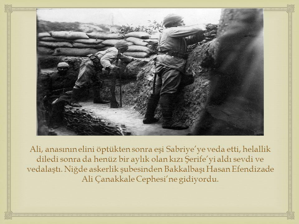  Bu fotoğraf ilk kez, Harbiye Nezareti tarafından neşredilen Harp Mecmuası' nın Kasım 1915 tarihli ikinci sayısının kapağında yer aldı.