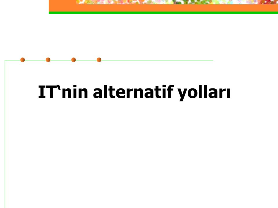 IT'nin alternatif yolları