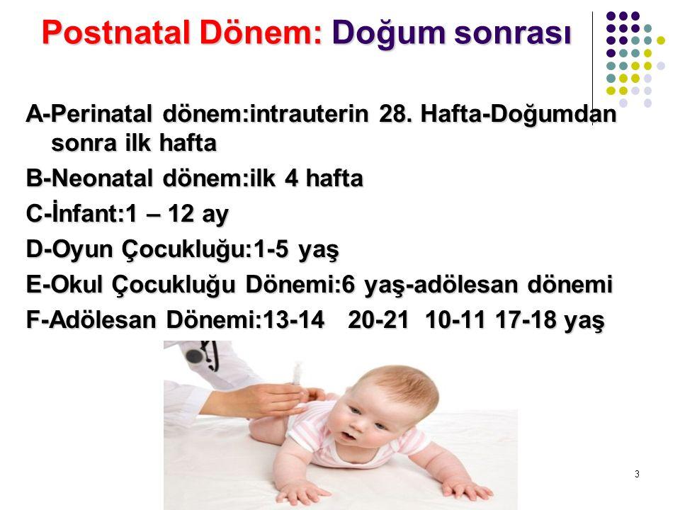 Postnatal Dönem: Doğum sonrası A-Perinatal dönem:intrauterin 28. Hafta-Doğumdan sonra ilk hafta B-Neonatal dönem:ilk 4 hafta C-İnfant:1 – 12 ay D-Oyun