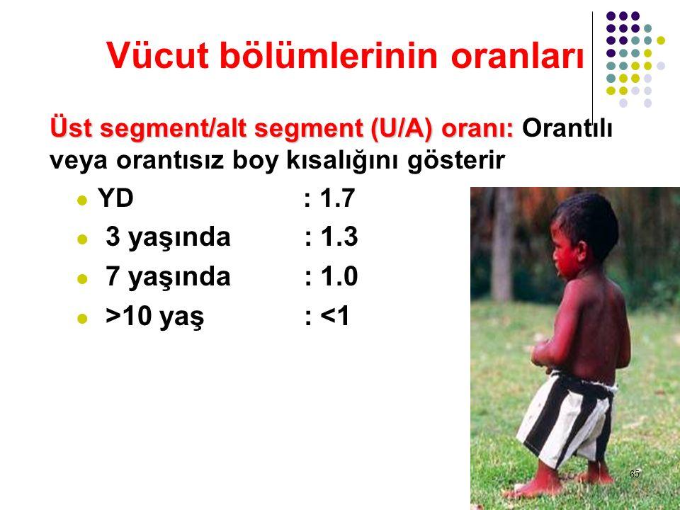 Vücut bölümlerinin oranları Üst segment/alt segment (U/A) oranı: Üst segment/alt segment (U/A) oranı: Orantılı veya orantısız boy kısalığını gösterir
