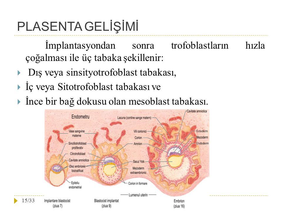 PLASENTA GELİŞİMİ İmplantasyondan sonra trofoblastların hızla çoğalması ile üç tabaka şekillenir:  Dış veya sinsityotrofoblast tabakası,  İç veya Si